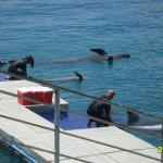 11 Ocean Adventure Subic