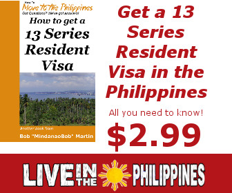 What is a 13A Visa
