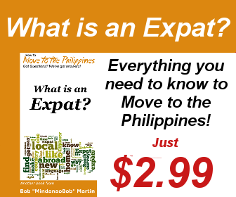 What is an Expat