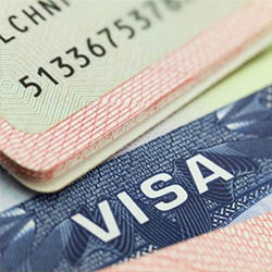 Visa Help