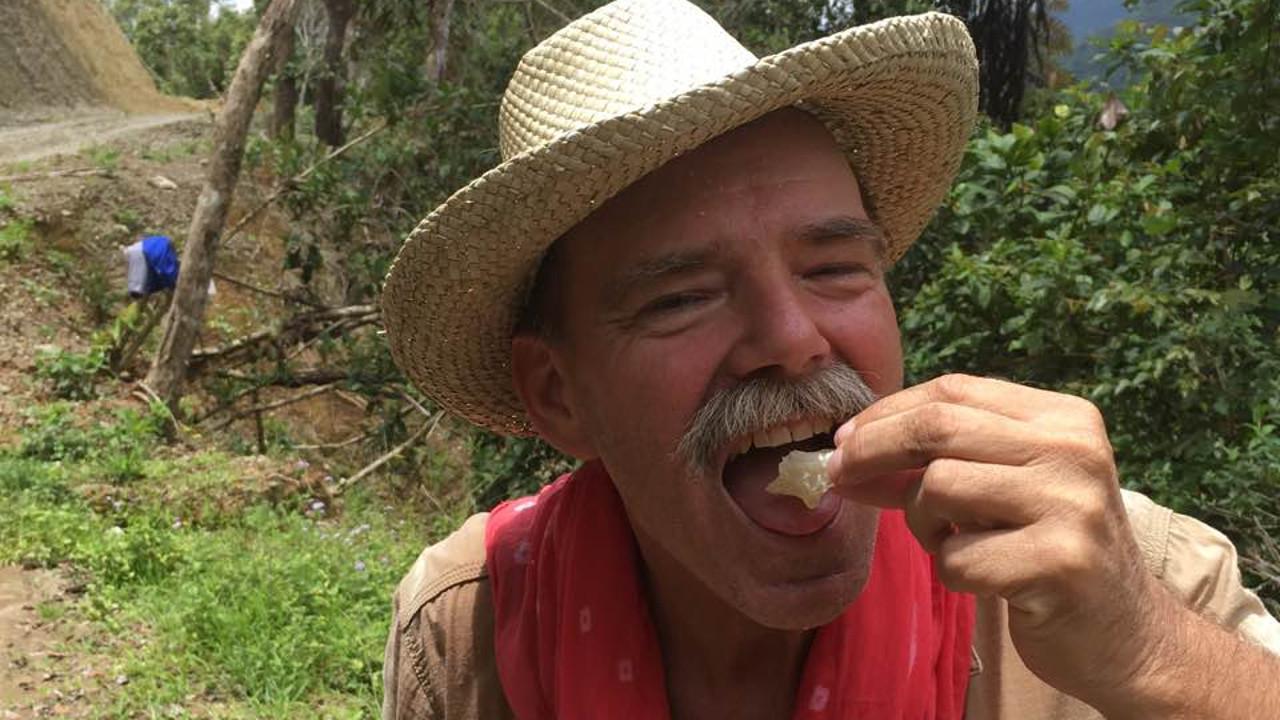 Wild honey tastes great! Photo by Tony Gerard
